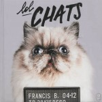 Calendrier #11  Lol Chats