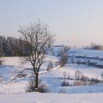 IMMB#2 Avalanche de livres, de neige, et de bidouilles!