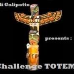 Challenge Totem # Présentation