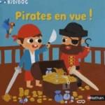 Pirates en vue – le blog est attaqué!