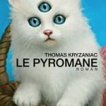Rentrée Littéraire 2013 – Premiers Romans