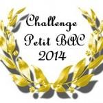 Challenge Petit Bac ~ Mes lectures