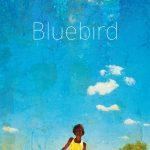 Bluebird – Roman ado/jeune adulte