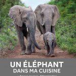 Un éléphant dans ma cuisine de Françoise Malby-Anthony et Katja Willemsen