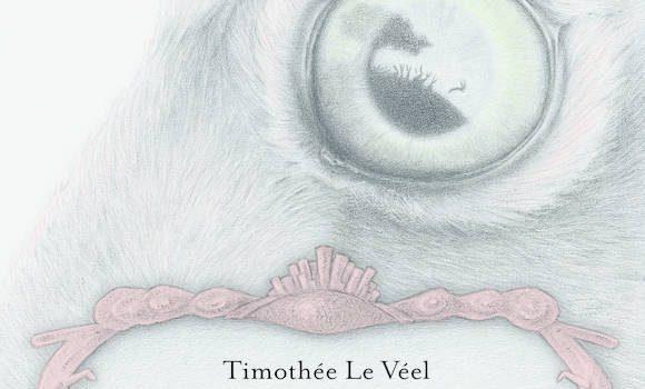Le lièvre et les lapins de Timothée Le Véel